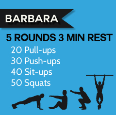barbara_benchmark_1